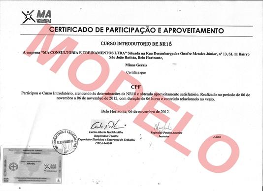 Certificado Curso NR33